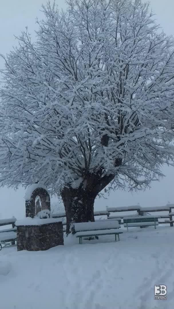 CRONACA METEO - Ancora NEVE in Veneto, la situazione in provincia di VICENZA - VIDEO