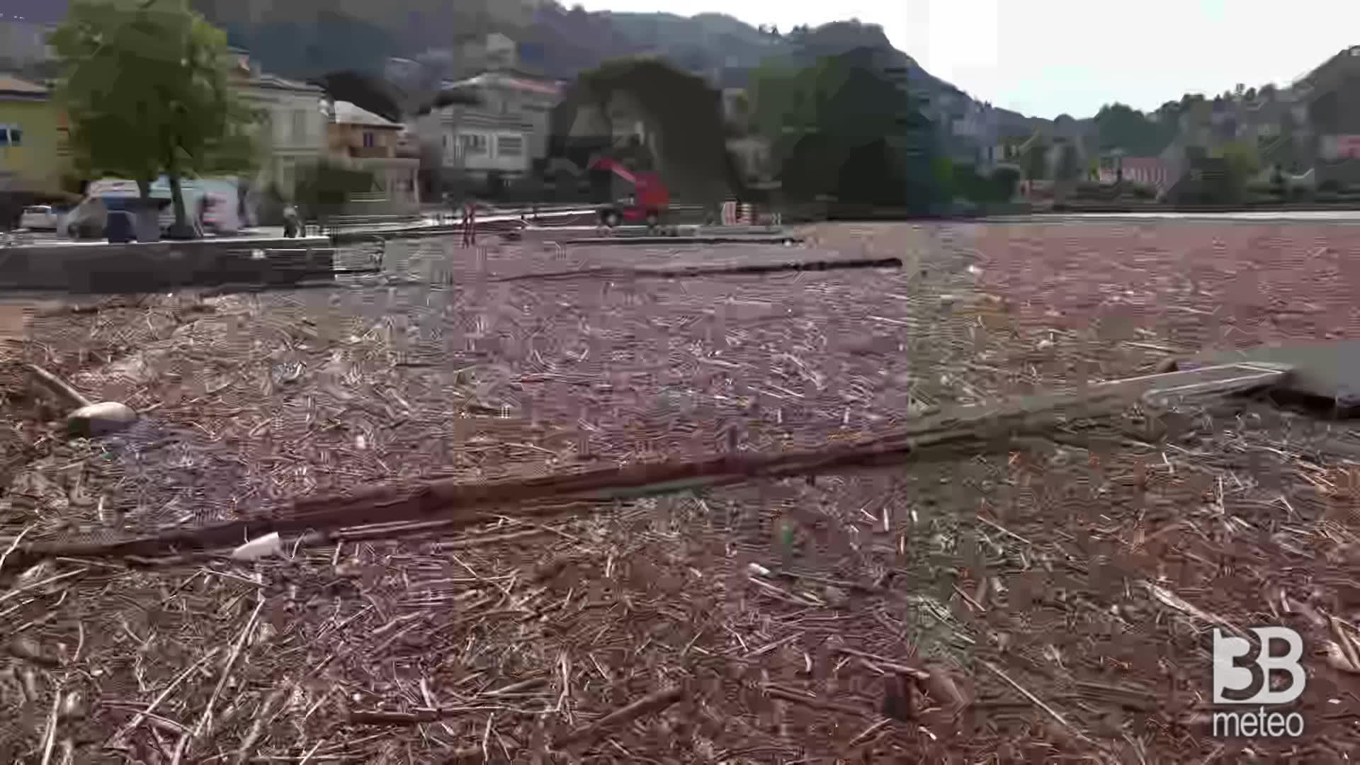 Detriti allo Yacht Club Como : legname galleggia al porto