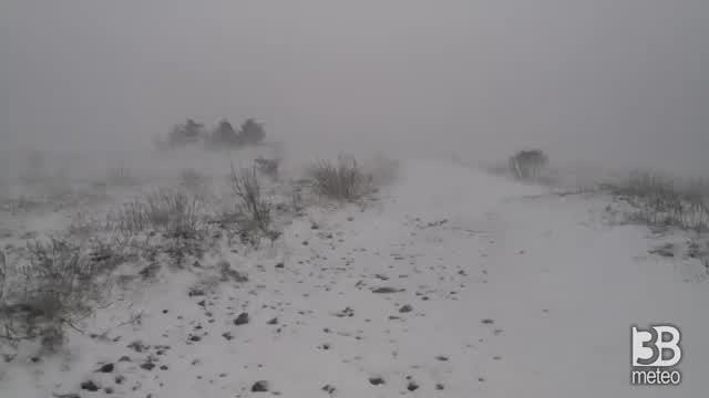 CRONACA METEO DIRETTA - Blizzard di NEVE alle spalle di Trieste - VIDEO