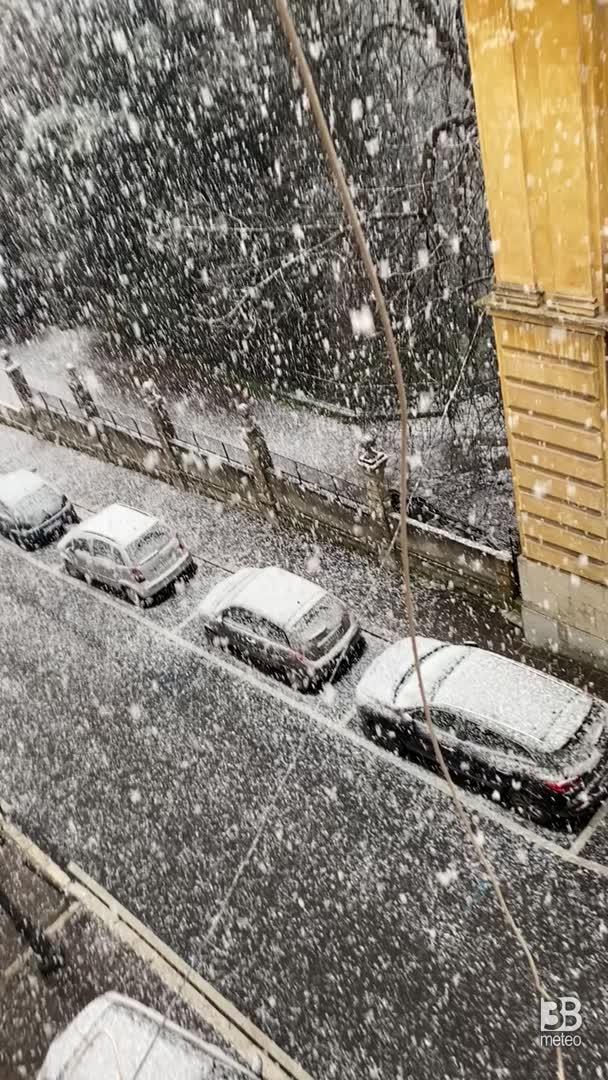 Fazzoletti di neve