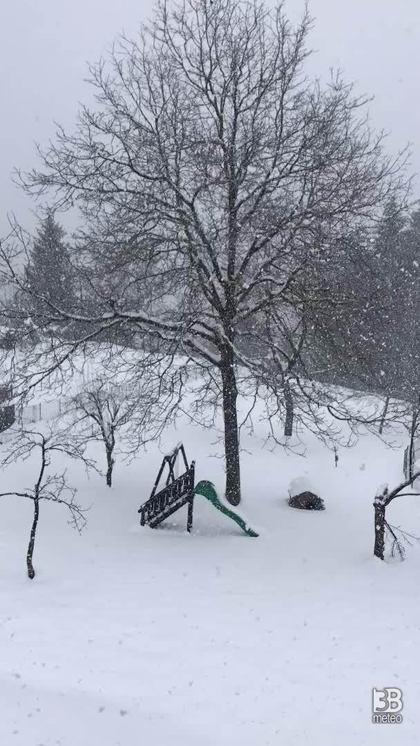Neve 29/13/2020 ore14.00