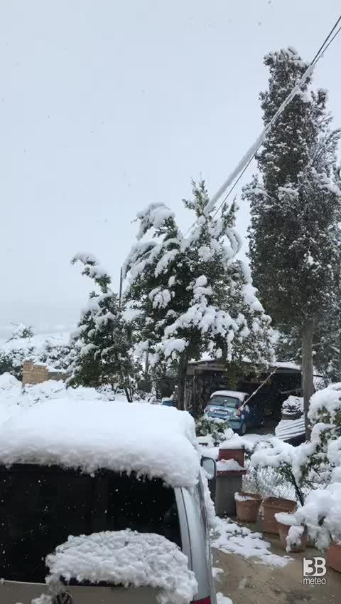 Nevicata marzo 2020