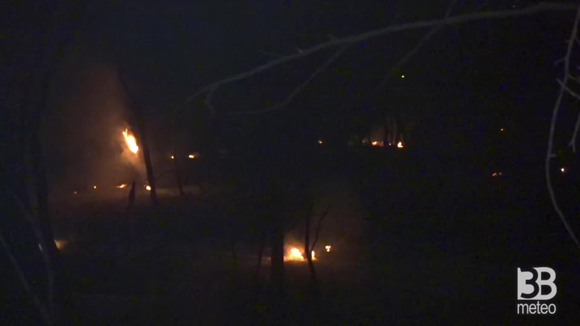 Pescara, a fuoco la pineta : fiamme nella notte, h 23