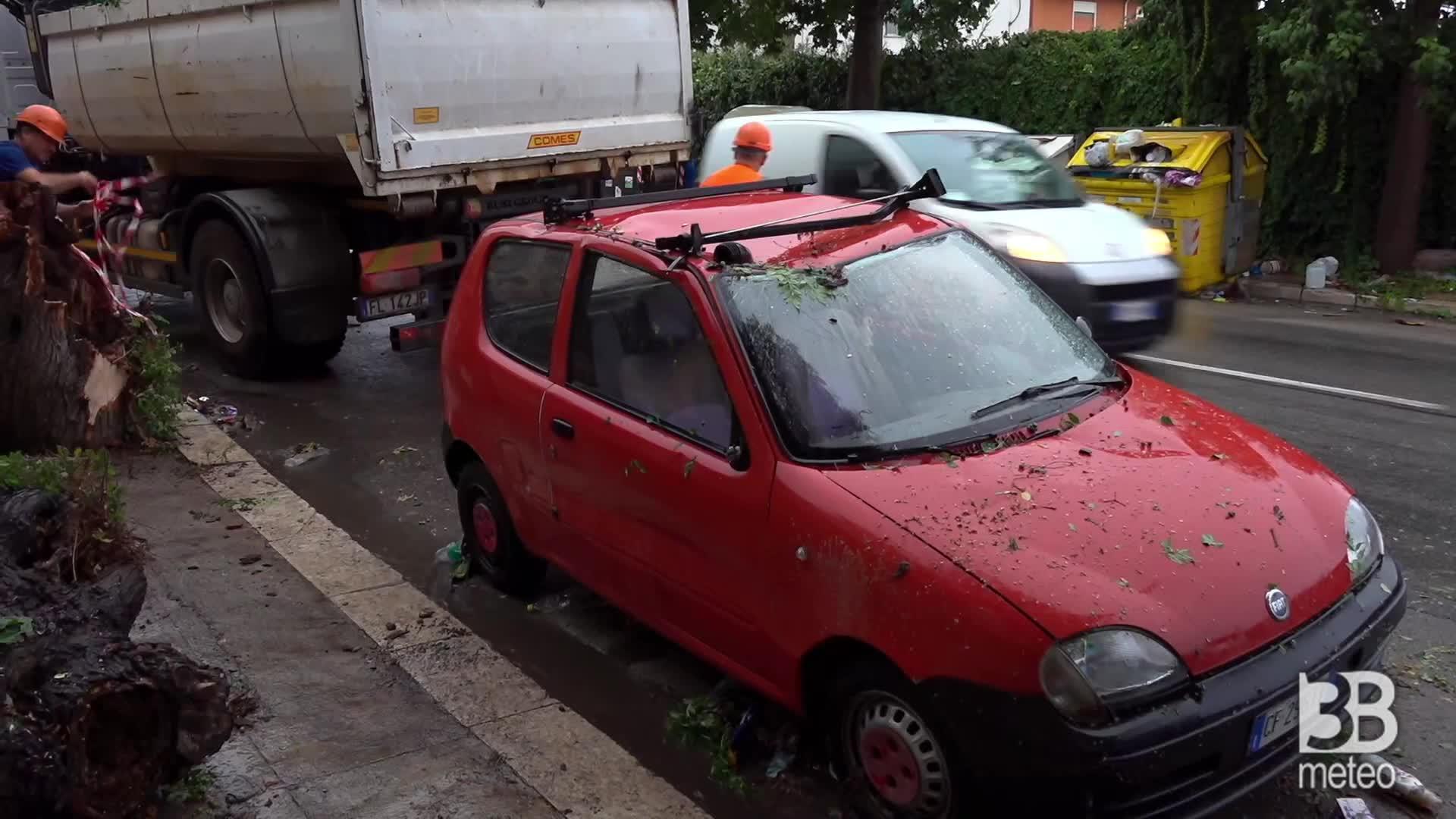 Maltempo a Palermo, danni: albero crolla su auto