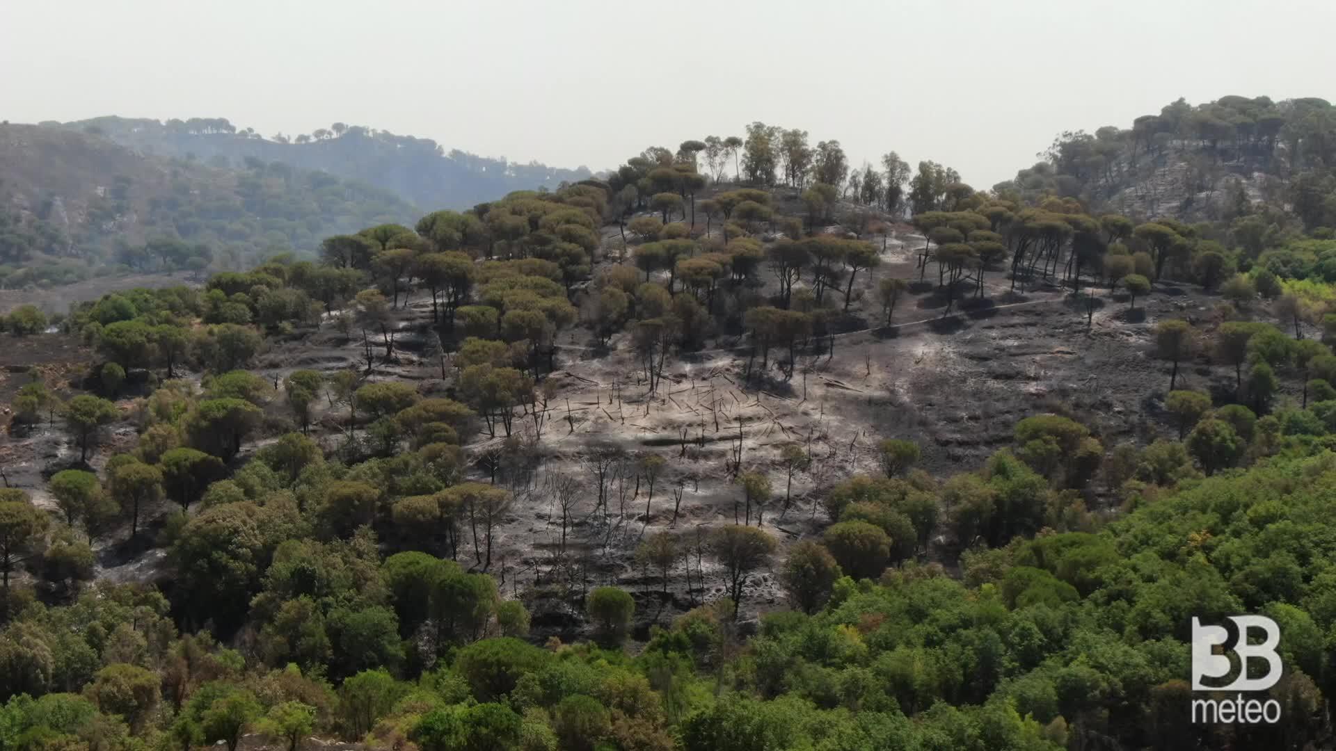 Cronaca Incendi, colline arse ad Aidone: immagini aeree. Video